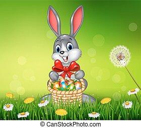 uovo, pasqua, coniglietto, Felice