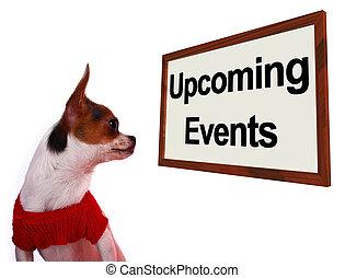 upcoming, πρόγραμμα , αιτία , θέση , σήμα , μέλλον , αγώνας , σκύλοι , αποδεικνύω