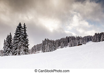 Uphill Ski Slope near Megeve in French Alps, France