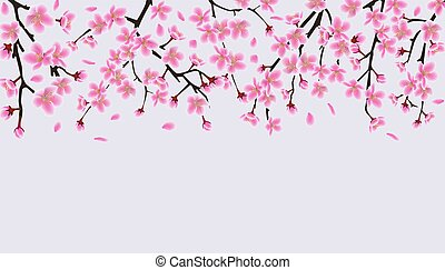 Upper frame border with blooming cherry or sakura vector illustration isolated.