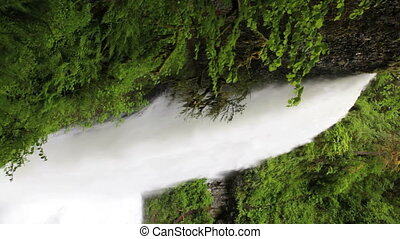 Upper North Falls, Silver Falls State Park, Oregon, includes high quality audio. Vertical.