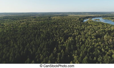 Upper view of green forests and pond in sunny weather....