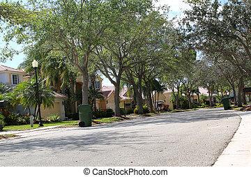 Upscale houses on a suburban street