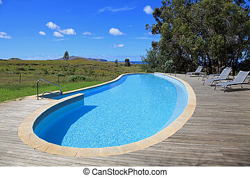 Upscale Swimming Pool