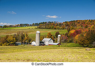 Upstate NY Farm - A local farm in upstate NY