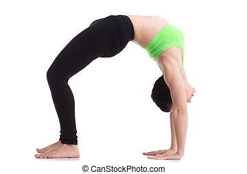 Upward Bow (Wheel) yoga Pose - Beautiful sporty girl doing...