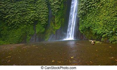 """Upward Tilting Shot of a Tropical Wilderness Waterfall, with Sound"""