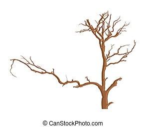 urbain, arbre, mort
