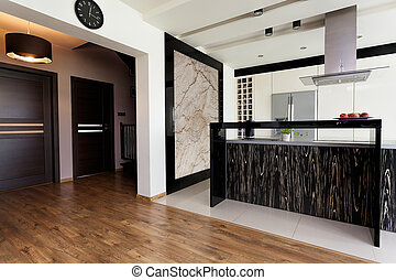 Urban apartment - open kitchen interior and corridor