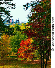 Urban autumn - Urban colourfull autumn landscape