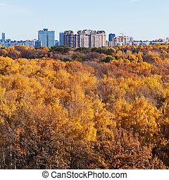 urban buildings on autumn forest edge