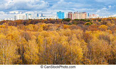 urban park and residential district in autumn