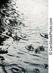 urban rain - focus point on center of photo