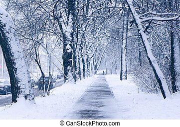 urbano, scene., inverno