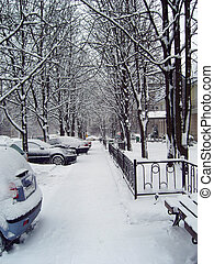urbano, secondo, scena, snowfall.