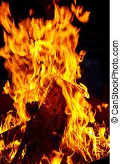 urente, fuoco, legna ardere, preparazione, legno, braciere