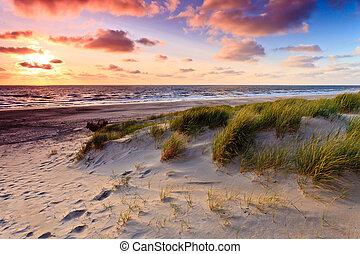 urgensy, piasek, wybrzeże, zachód słońca