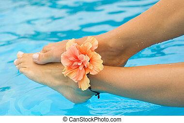 urlaub, concept., beine, in, der, schwimmbad