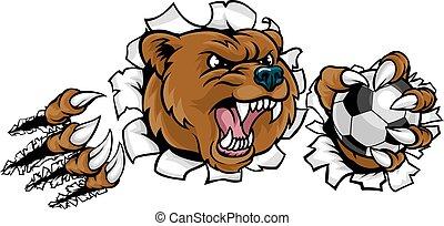 urso, bola futebol segurando, quebrar, fundo