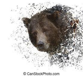 urso marrom, aquarela