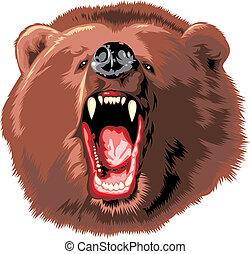 urso marrom