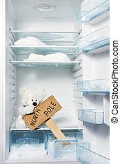 urso polar, em, refrigerador, com, pólo norte, sinal.,...