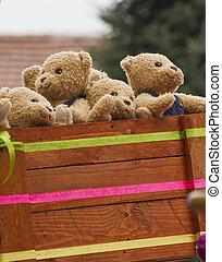 ursos teddy