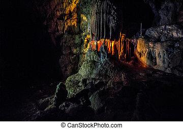 Ursus spelaeus cave in romanian mountains transilvania -...
