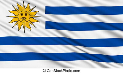 Uruguaian Flag, with real structure of a fabric