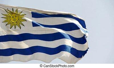 uruguay αδυνατίζω , βρίσκομαι , πτερύγισμα , μέσα , wind.