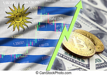 Uruguay flag and cryptocurrency growing trend with two bitcoins on dollar bills