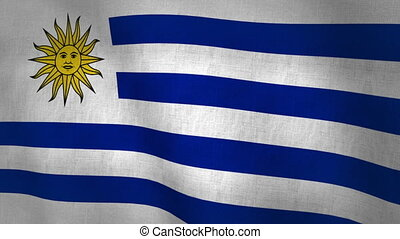 Uruguay Flag Background (Loop-able)