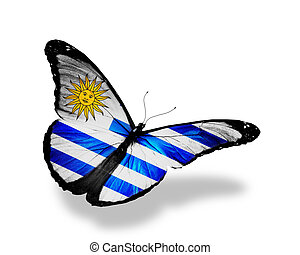 Uruguay flag butterfly flying, isolated on white background