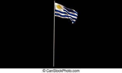 Uruguay national flag waving on flagpole on black background