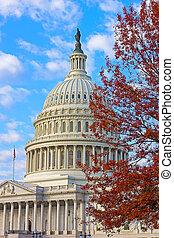 US Capitol building in autumn color