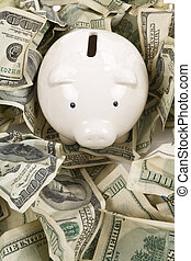 US Dollars and Piggy Bank