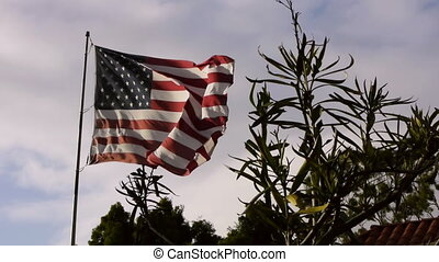 US Flag With Foreground Plants