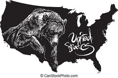 u.s., mapa, siwy, szkic, niedźwiedź