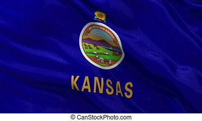 US state flag of Kansas loop