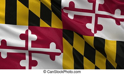 US state flag of Maryland loop