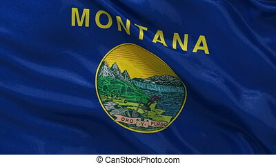 US state flag of Montana loop