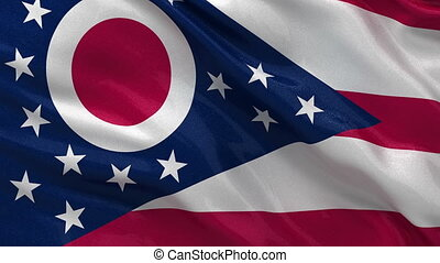 US state flag of Ohio loop