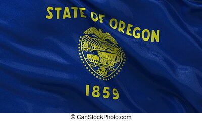 US state flag of Oregon loop