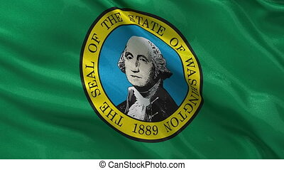 US state flag of Washington loop