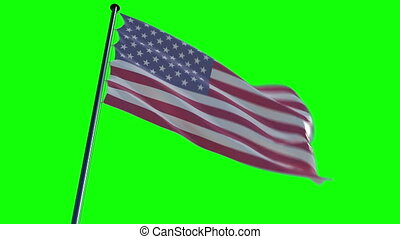 USA Flag with greenscreen and alpha