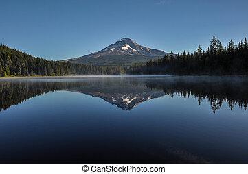 USA, huv, montera, insjö, morgon, tidigt,  Oregon,  trillium