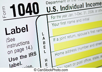 USA Individual income tax form