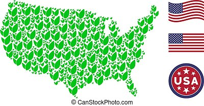 USA Map Stylization of Floral Sprout