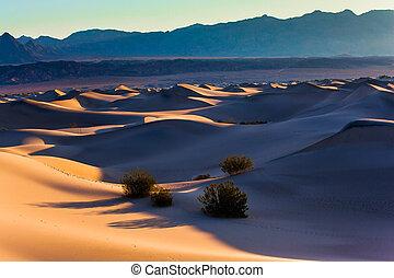 Dunes illuminated by orange sunset