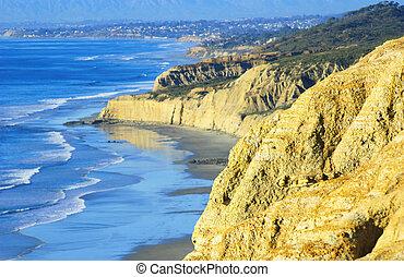 usa), pijnbomen, torrey, (southern, strand, californië